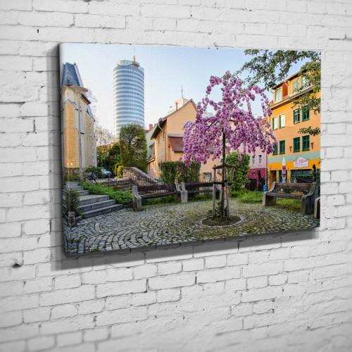 Blütenpracht in der Wagnergasse (BNr 204)-Jena