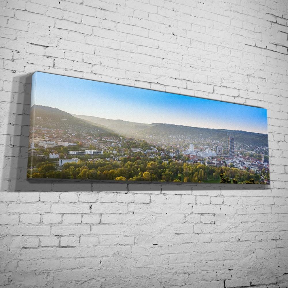 Blick von der Horizontale auf Jena